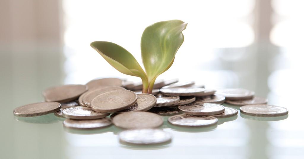 Успешный бизнес за полгода: как зарабатывать $10 000 в месяц