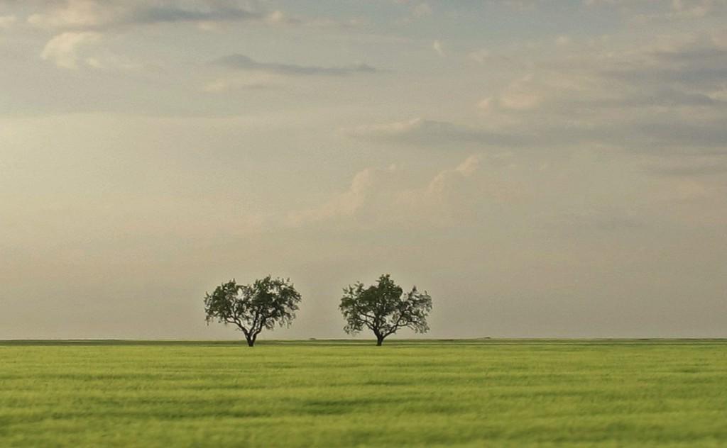 «Пустота — это полезно»: 25 важных мыслей о простой и правильной жизни