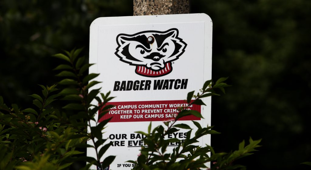 Badger всегда настороже и следит за тобой. Фото: Elena Shirikova