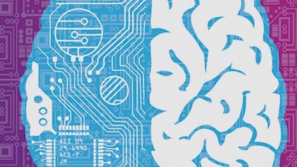 Что делает мозг уникальным? Три главных задачи нейронауки на ближайшие 10 ...
