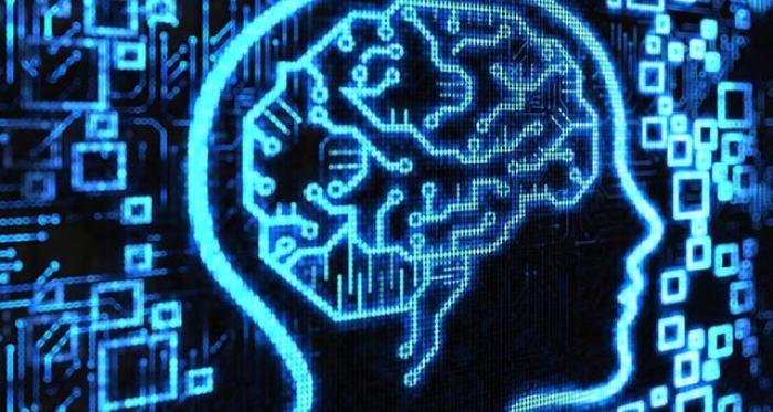 100 миллиардов нейронов: чем ограничены способности человеческого мозга