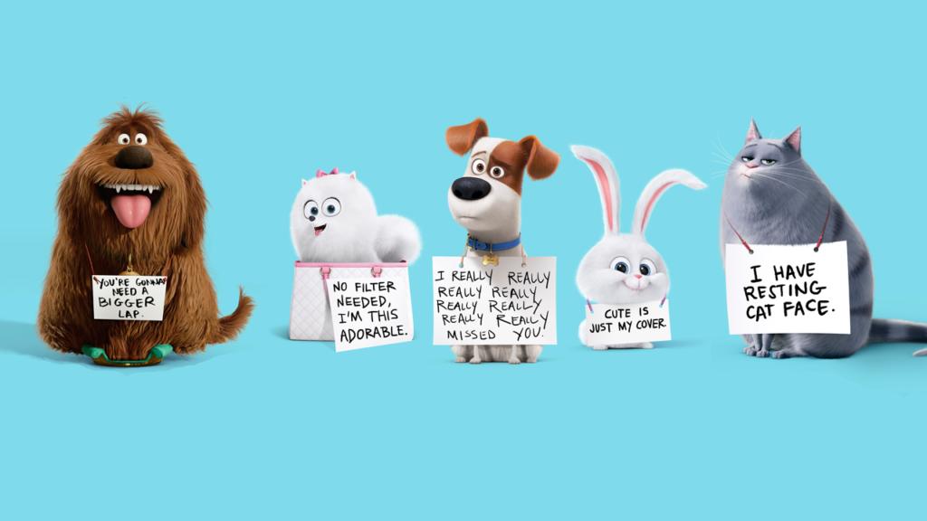Собака в аренду: странные законы новой экономики