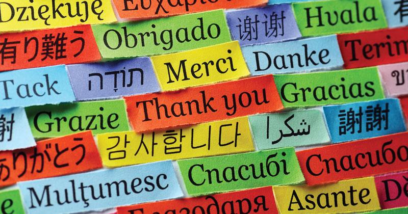 Английский с нуля: в каком возрасте лучше начинать изучение языков