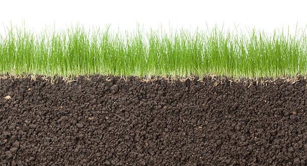Покупайте грязь: 4 оригинальных совета, как сколотить состояние