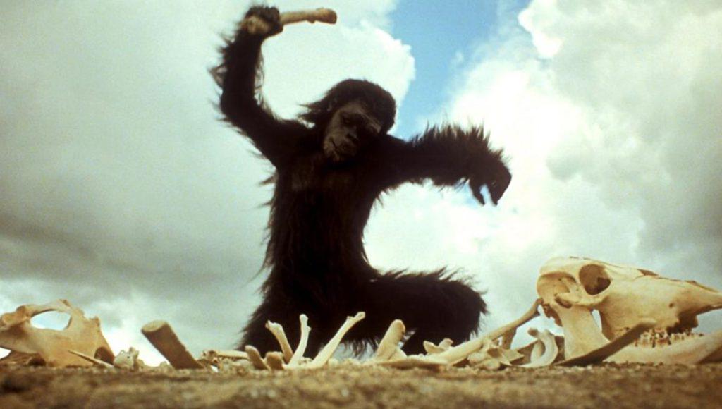Не только труд: как война сделала из обезьяны человека