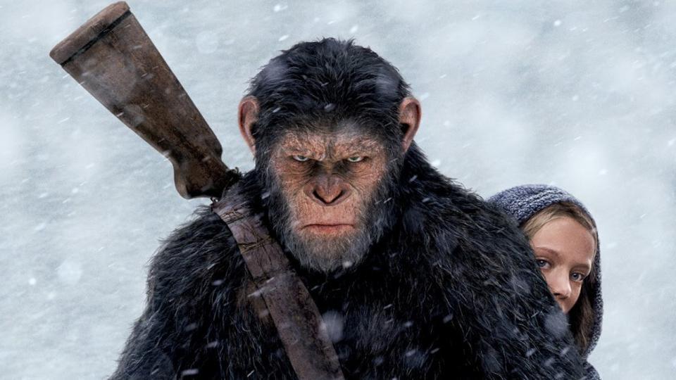 Избавьтесь от шимпанзе: 4 совета по борьбе с тревогой