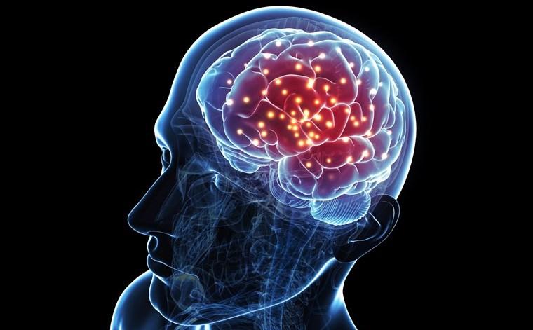 Протез для памяти и ночное зрение: 6 проектов, которые объединяют мозг с ...